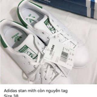 Adidas stan mith của ngocanh.hoangle.5 tại Quảng Trị - 2350011