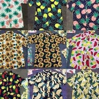 Áo hoa quả  của changchann tại Chu Văn Thịnh, Chiềng Lề, Thành Phố Sơn La, Sơn La - 2810691
