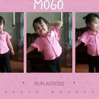 Áo hồng cánh rơi của huoghana tại Phủ Lý, Thành Phố Phủ Lý, Hà Nam - 3208563