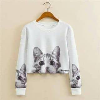 Áo mèo của songeunjin tại Hà Tĩnh - 2206058