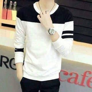 áo Nam của quynhtrang334 tại Thái Bình - 2456654
