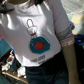 Áo nữ của tranly142 tại Quảng Trị - 2443298