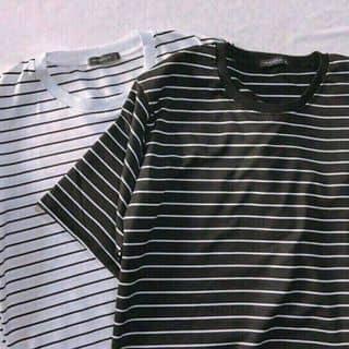 áo thun của vyvy475 tại 01235901948, Thành Phố Rạch Giá, Kiên Giang - 3448774