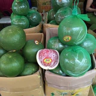 Bán buôn bán lẻ  bưởi da xanh của 01205678010 tại Hưng Yên - 2124391
