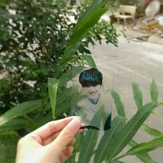 Card trong suốt của mynnguyen tại Phú Thọ - 3268575