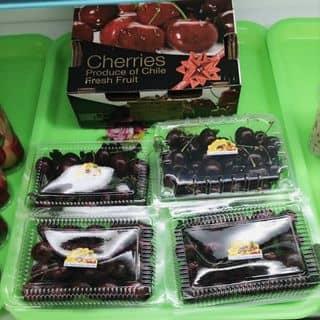 Cherry New Zealand của phamdi7 tại Trần Đại Nghĩa, Phường 4, Thành Phố Vĩnh Long, Vĩnh Long - 2261024