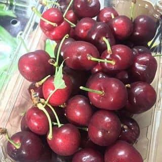 Cherry Mỹ size 9.5 của bu.beo.507 tại 51 Trần Kế Xương, phường 7, Quận Phú Nhuận, Hồ Chí Minh - 3839163