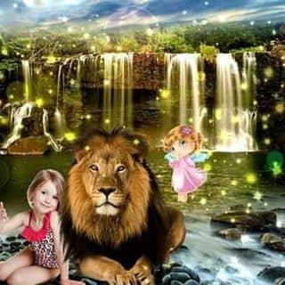 Cô bé bé bổng và con sư tử của kulkenny tại Huyện đảo Lý Sơn, Huyện Lý Sơn, Quảng Ngãi - 764421