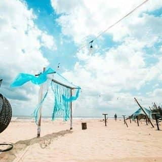 Coco Beach Camp của truongtu983 tại La Gi, Bình Thuận, Huyện Bắc Bình, Bình Thuận - 3505710