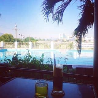 Coffee của bedethuongthuongkode47 tại tt. Diêu Trì, Huyện Tuy Phước, Bình Định - 4769508
