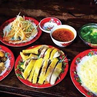 Cơm gà xé & gà chặt& trứng xào lòng của devilt0m9x tại 22 Phan Châu Trinh, Minh An, Thành Phố Hội An, Quảng Nam - 478727