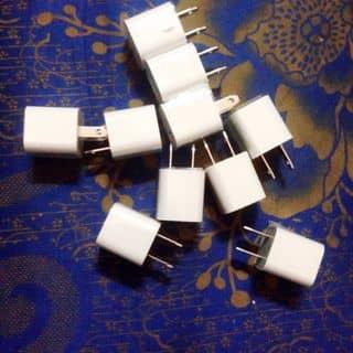 Củ táo của lymeos1 tại Quảng Nam - 3419073