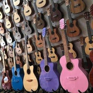 Đàn acoustic, classic của diepnguyet2 tại Lâm Đồng - 3407035