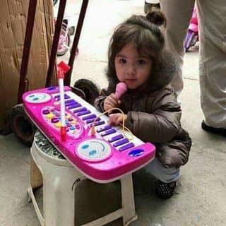 đàn mic của linhle307 tại Thanh Hóa - 3237143