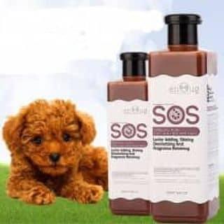 Dầu tắm chó SOS của livetolove381 tại Hồ Chí Minh - 3418527
