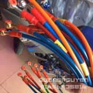 Dây dầu morin của vogiuschool tại Hồ Chí Minh - 3889558
