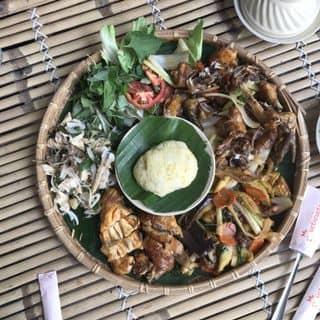 Gà mẹt của phuongtruong0301 tại 129 Trần Huy Liệu, phường 8, Quận Phú Nhuận, Hồ Chí Minh - 4253155