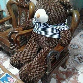Gấu của nguyenthituyetnhung3 tại Lào Cai - 851247