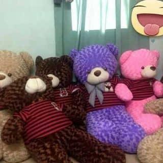 Gấu của duongnguyen287 tại Chợ Trà Vinh, phường 3, Thị Xã Trà Vinh, Trà Vinh - 1241643