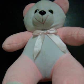 Gấu bông hồng của linhmiu2311 tại Hà Tĩnh - 3498297