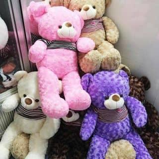 Gấu teddy của lamda2 tại Sóc Trăng - 3648844