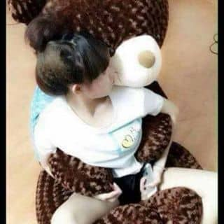 Gấu teddy của nganquynhdangthi tại Thừa Thiên Huế - 2226870
