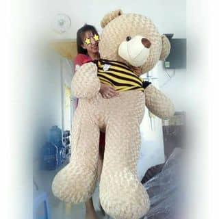 Gấu Teddy vĩ đại của lamda2 tại Sóc Trăng - 3643292