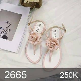Giày Sandal kẹp ngón hoa hồng - 2665 free ship của lamanh17 tại Hậu Giang - 1169687