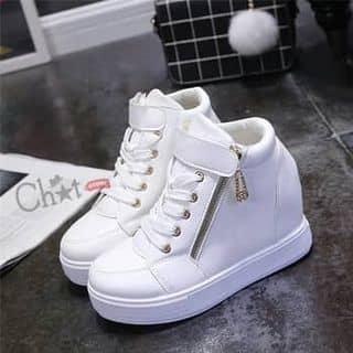 Giày sneaker độn đế nữ của nguyenxuan459 tại Hà Tĩnh - 3729548