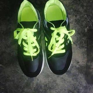 Giày thể thao của onsky tại Yên Bái - 3158098