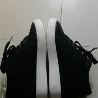 Giày thể thao độn gót 6p new 98%  của nhala2 tại Thừa Thiên Huế - 3009629