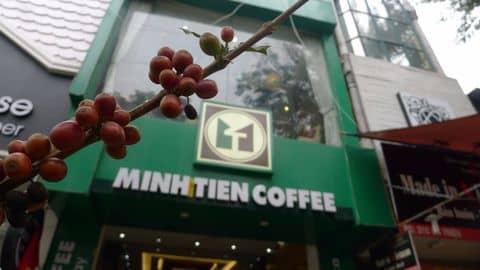 Hạt cà phê tươi - 266013 vungo92 - Minh Tiến Coffee - Bà Triệu - 31