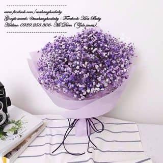 Hoa baby nhập - Hoa tươi - Có nhiều màu để đc thành hoa khô của cuahanghoababy tại Bà Hom, Quận 6, Hồ Chí Minh - 3913455