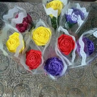 Hoa xinh của phamsuong24 tại Ninh Thuận - 3515277