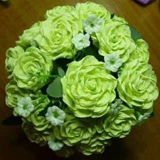 Hoa xinh của phamsuong24 tại Ninh Thuận - 3838094