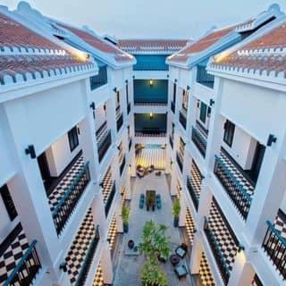 Không gian của thaole89 tại 544 Cửa Đại, Sơn Phong, Thành Phố Hội An, Quảng Nam - 2927783