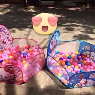 Lều bóng 100 quả của leniem tại Quảng Trị - 2702429