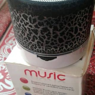 Loa Bluetooth xinh xinh giá rẻ  của thuonghoai298 tại Sơn La - 3339197