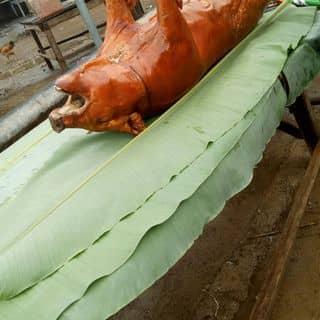 Lợn quay Lạng Sơn của kimhieu26 tại Shop online, Huyện Lộc Bình, Lạng Sơn - 4294922