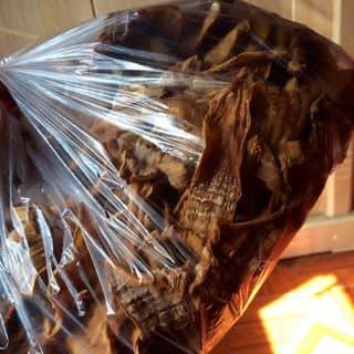 Măng cây đa Tân Trào của duongthituyet6677028 tại Thành phố Thái Nguyên, Thành Phố Thái Nguyên, Thái Nguyên - 4630840
