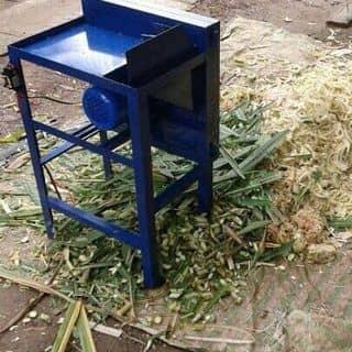 Máy xay cỏ. Xay chuối của laman30 tại Trà Vinh - 2329500