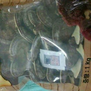 Nam linh chi han quoc của giotle tại Thanh Hóa - 3111204