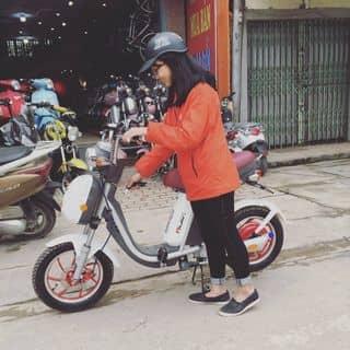 Nijia Việt Nam 🍀🍀 Mua hàng ibx hoặc liên hệ 0966.299.812 của linhnguyenngoc604 tại Yên Bái - 2533980
