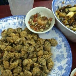 Ốc hương rang muối của tamtran17 tại Chợ 200, Xóm Chiếu, Quận 4, Hồ Chí Minh - 731086