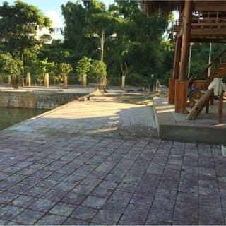 Quán cọ của cuongphamduc1985 tại Chiềng Mung, Huyện Mai Sơn, Sơn La - 577313