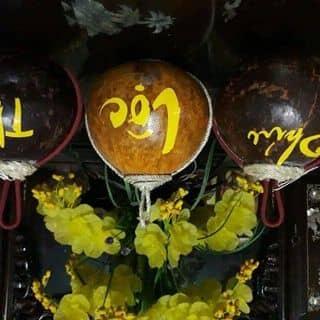 Rượu quê của luunam4 tại Trương Xá, xã Toàn Thắng, Huyện Kim Động, Hưng Yên - 2304223