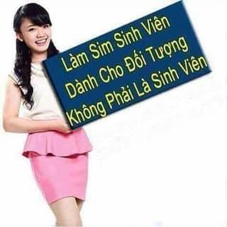 Sim SV vinaphone - sim đôi viettel của anhtuandbp tại Điện Biên - 2896465