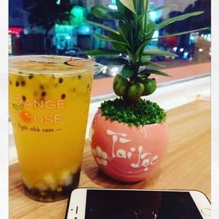 Trà trái cây của linhduong3 tại 108 Nguyễn Văn Cừ, Nguyễn Cư Trinh, Quận 1, Hồ Chí Minh - 3834796