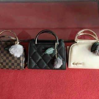 Túi  của vinhthu6 tại Hà Tĩnh - 3627448