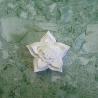 Tượng bông hoa 5 cánh của phuongvc123 tại Sóc Trăng - 2729459